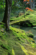The Moss Garden at Saihoji Temple, Because of the beautiful moss that covers the land in the garden, Saihoji is often called the &quot;Moss Temple&quot; or Koke-dera.<br /> The garden was designed by reknowned Zen monk and garden designer par excellence Muso Soseki  and is covered with 120 types of moss.