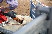 Jackson Hole Rodeo 2014