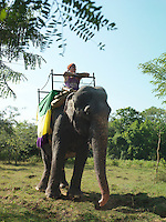 Young woman riding elephant leaning looking at view