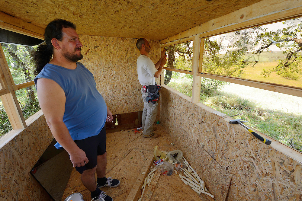 Ranger and field officer Todor Mitkov building a hide for vulture watching, Kondovo, Eastern Rhodope mountains, Bulgaria