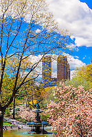 Central Park in springtime, New York, New York USA.