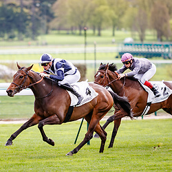 Do Re Mi Fa Sol (PC. Boudot) wins Prix du Carrefour Curie in Longchamp, France 08/04/2018, photo: Zuzanna Lupa