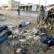 28 Jan 2005.Ramadi, Iraq.Iraqi National Guard/assassination victims...At dawn on the 28 Jan 2005 a US Army patrol in Ramadi, Iraq discovered the bodies of four Iraqi males killed by gunshot wounds to the head. The bodies are believed to be those of four Iraqi National Guardsmen who were kidnapped in the city on Thursday. Local witnesses report that the men were brought to the rubbish dump alive in the trunk of a car, forced into the open and then gunned down. Amoungst the bodies was found a note from the 'Death squad' responsible for the assassinations confirming that the reason for the mens death was their employment as part of Iraq's security forces. With elections only days away the insurgents campaign of terror against potential voters and the officials and security personnel shows no sign of weakening.