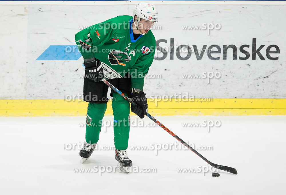 Luka Zorko of SZ Olimpija during ice hockey match between HK SZ Olimpija and WSV Sterzing Broncos Weihenstephan (ITA) in Round #12 of AHL - Alps Hockey League 2018/19, on October 30, 2018, in Hala Tivoli, Ljubljana, Slovenia. Photo by Vid Ponikvar / Sportida