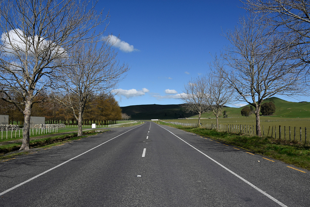 A straight road with no traffic and the Rolling hills around Napier, New Zealand