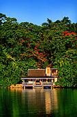 TROPICAL JAMAICA