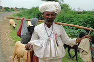 Maldhari shepherd giving his tired lamb a lift..Michael Benanav - mbenanav@gmail.com