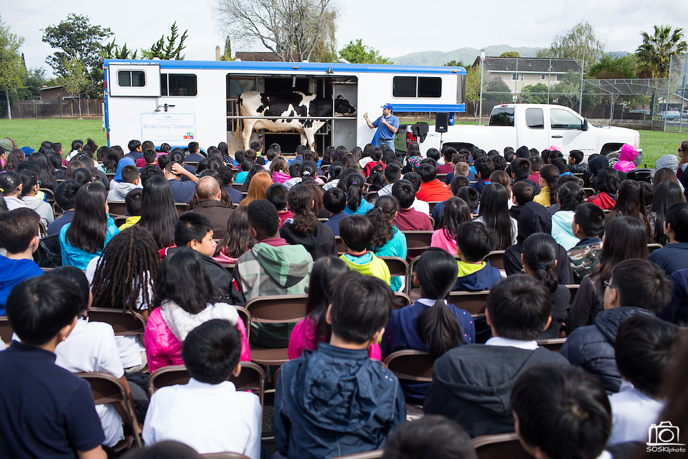 Dairy Council of California Instructor Brandon Roberts teaches students about cow anatomy and the milking process during the Mobile Dairy Classroom visit at Zanker Elementary School in Milpitas, California, on March 14, 2016. (Stan Olszewski/SOSKIphoto)