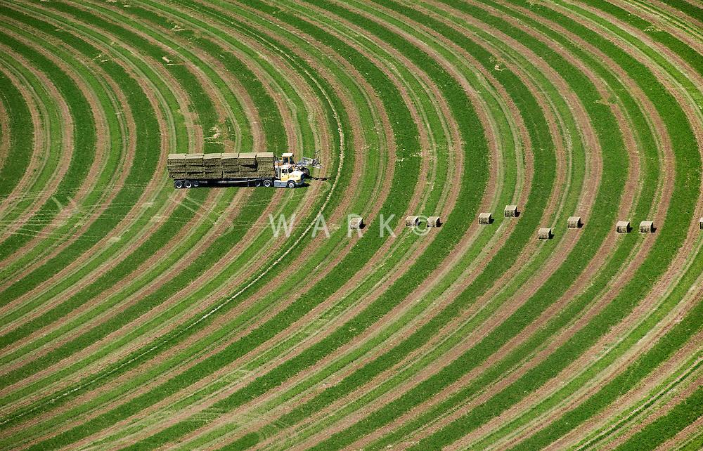 Harvesting hay bales near Delta, Utah. June 2011