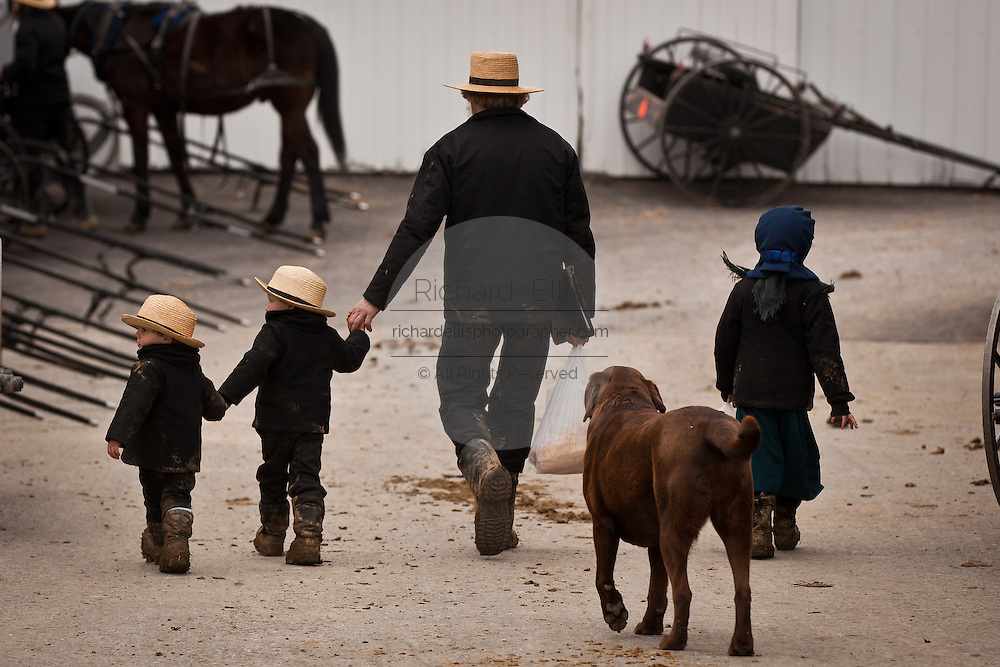 Amish family walks together holding hands in Gordonville, PA.