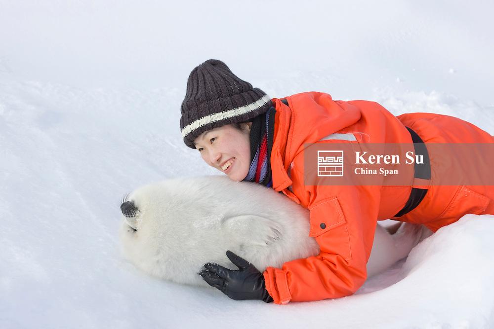 Tourist with harp seal pup, Iles de la Madeleine, Quebec, Canada