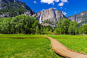 Boardwalk through meadow under Yosemite Falls, Yosemite National Park, California USA