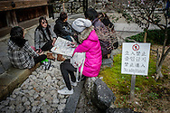 "Young East Asian travelers flirting with Kyoto boundaries of sensitivity while taking a break beside a ""No Admittance"" sign at Kyomizu Temple in Kyoto, Japan."