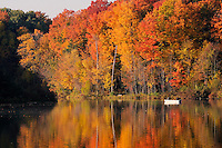Ionia County, Michigan