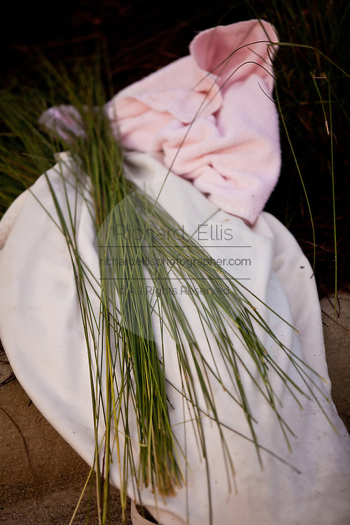 Sweet grass rush sits drying after harvest to prepare for traditional baskets in Charleston, SC.