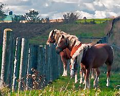 Rural Images