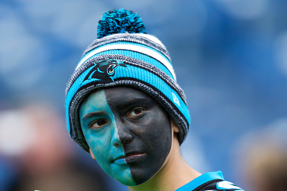 NASHVILLE, TN - NOVEMBER 15: Fan of the Carolina Panthers watches players warm up before a game against the Tennessee Titans at Nissan Stadium on November 15, 2015 in Nashville, Tennessee.  (Photo by Wesley Hitt/Getty Images) *** Local Caption ***