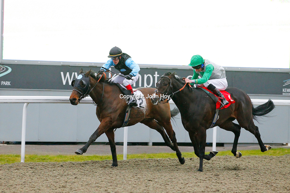 Loyalty and Adam McLean winning the 4.20 race