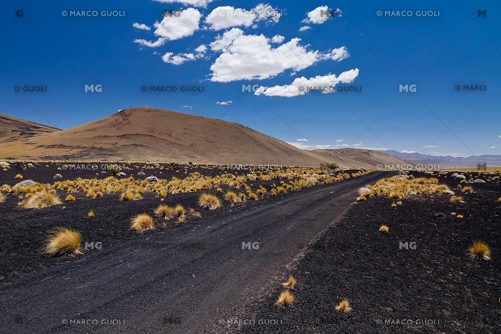 CAMINO NEGRO DE PIEDRAS VOLCANICAS, ESTEPA DE COIRONES (Festuca gracillima - fam. poaceas) Y CONO VOLCANICO, PAMPA NEGRA, RESERVA PROVINCIAL LA PAYUNIA (PAYUN, PAYEN), MALARGUE, PROVINCIA DE MENDOZA, ARGENTINA (PHOTO © MARCO GUOLI - ALL RIGHTS RESERVED)