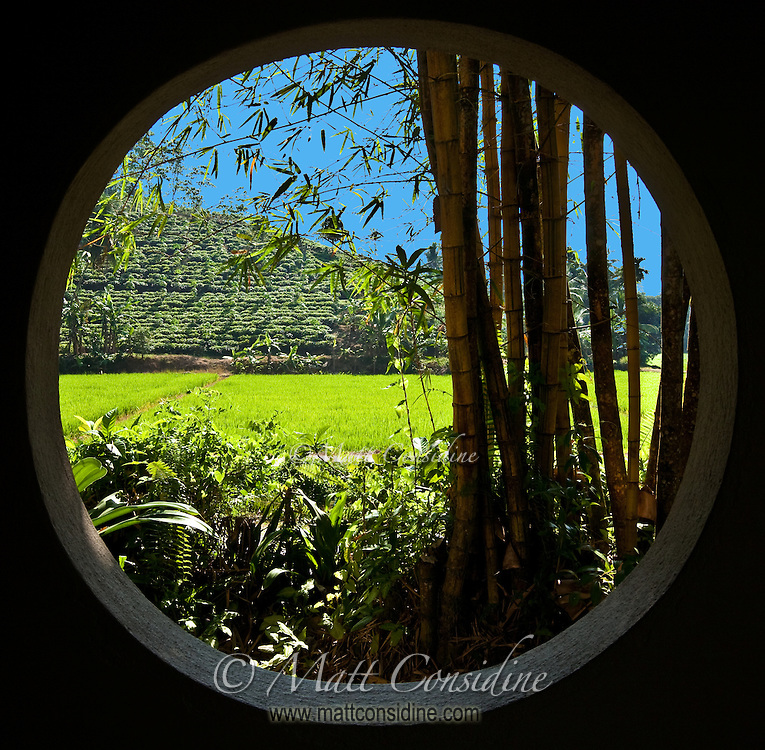 From this one window you can see bamboo, rice and tea growing.<br /> (Photo by Matt Considine - Images of Asia Collection)
