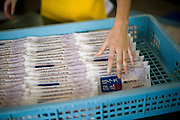 A member of staff loads packaged sasa-kamaboko into a crate at Oizen Shoten's factory in Tome City, Miyagi Prefecture, Japan on 11 Sept. 2012.  Photographer: Robert Gilhooly