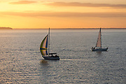 Sailing boats at sea at sunset by the River Solent, UK