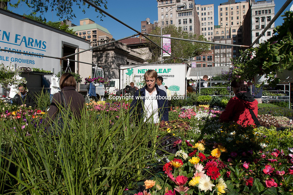 New York. Union square. farmer's organic market  Manhattan  New York - United states   / marché fermier biologique de union square/ Manhattan  New York - Etats-unis