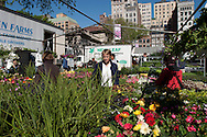 New York. Union square. farmer's organic market  Manhattan  New York - United states   / marché fermier biologique de union square/ Manhattan  New York - Etats-unis