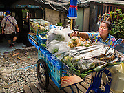 25 JANUARY 2015 - BANGKOK, THAILAND: A street food vendor prepares her cart before starting work. After months of relative calm following the May 2014 coup, tensions are increasing in Bangkok. The military backed junta has threatened to crack down on anyone who opposes the government. Relations with the United States have deteriorated after Daniel Russel, the US Assistant Secretary of State for Asian and Pacific Affairs, said that normalization of relations between Thailand and the US would depend on the restoration of a credible democratically elected government in Thailand.   PHOTO BY JACK KURTZ