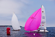 Pink Storm, Viper 640 Class, sailing to the leeward mark during Bacardi Newport Sailing Week, day 2.