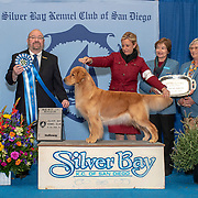 Silver Bay Kennel Club 02/24/2019