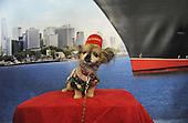 02/11/2017, 02/15/2017 Cunard at Westminster Dog Show