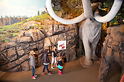 Kids exploring the Columbia Gorge Discovery Center