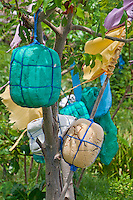 Fishing floats hanging in a tree near Amed, Bali, Indonesia