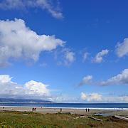 Drakes Bay, Point Reyes National Seashore, California