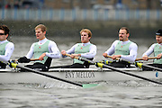 """LONDON, ENGLAND - Thursday  13/12/2012; Cambridge University Crew; """"Mash"""",  right to left, : Jack Lindeman, 4: Helge Gruetjen, 5: George Nash, 6: Grant Wilson, 7: Alexander Scharp, during the annual Varsity trial 8's for The BNY Melon University Boat Race over the Championship Course [Putney to Mortlake]. The River Thames, England. (Mandatory Credit/ Peter  Spurrier/Intersport Images]"""
