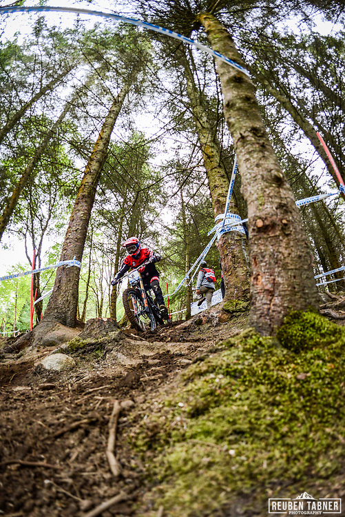 Neko Mulally works out a way through the trees during his practise run at the Fort William Mountain Bike World Cup.