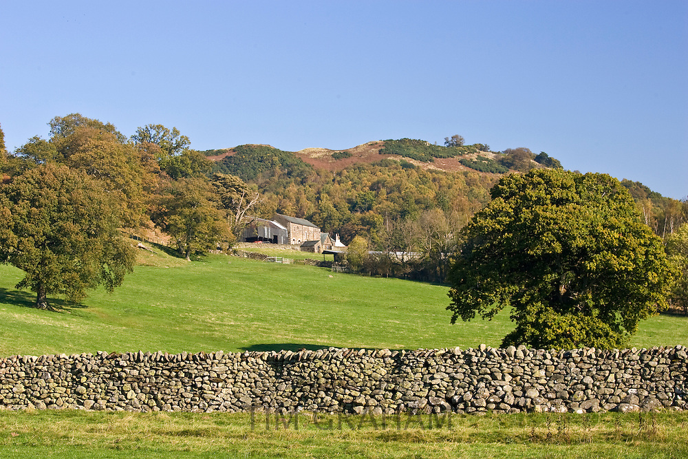Dry-stone wall at Lakeland Hill Farm, Lake District, England, United Kingdom