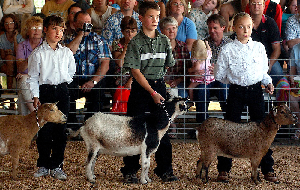 JEROME A. POLLOS/Press..Tiffany Palmar, right, John Graves and Cecilia Graves show their goats during a 4H presentation on Friday.
