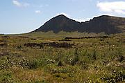 Rano Raraku, Easter Island