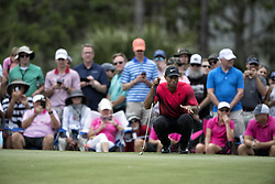 May 13, 2018 - Ponte Vedra Beach, FL, USA - The Players Championship 2018 at TPC Sawgrass..Tiger Woods on #4 green. (Credit Image: © Bill Frakes via ZUMA Wire)