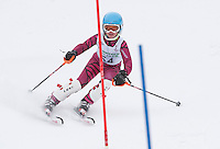 J4 J3 Tony Buttinger Memorial Slalom  February 13, 2011.