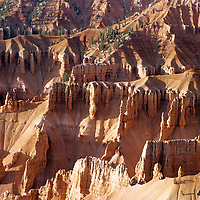 USA, Utah, Cedar Breaks. Hoodoos of Cedar Breaks National Monument.