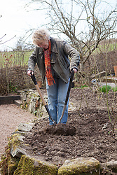 Carol Klein dividing a clump of Geranium psilostemon before replanting in Annie's border