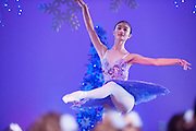 Wellington, NZ. 6.12.2015.  Sugar Plum Fairy, from the Wellington Dance & Performing Arts Academy end of year stage-show 2015. Little Show, Sunday 10.15am. Photo credit: Stephen A'Court.  COPYRIGHT ©Stephen A'Court