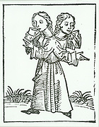 Siamese or conjoined twins. Children joined at the back.  Reported in 11th century.  From 'Liber chronicarum mundi (Nuremberg Chronicle) by Hartmann Schedel (Nuremberg, 1493). Woodcut.