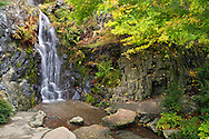 A waterfall at Queen Elizabeth Park in Vancouver, British Columbia, Canada