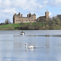 fishing on Linlithgow Loch , Linlithgow, West Lothian , Scotland