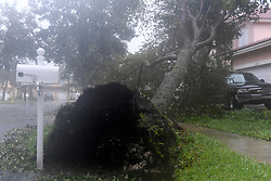 A downed tree in front of a home in The Vineyards at Monarch Lakes in West Miramar brought down by strong winds and rain from Hurricane Irma Sunday afternoon, September 10, 2017. As the hurricane moved north up the Gulf coast, it brought violent weather to South Florida. Photo by Taimy Alvarez/Sun Sentinel/TNS/ABACAPRESS.COM