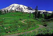 Image of Mount Rainier with hiking trail near Paradise, Mount Rainier National Park, Washington, Pacific Northwest